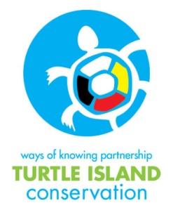 TIC_Logo